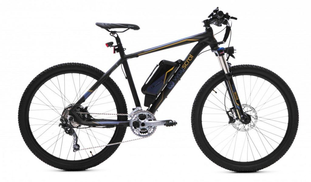 Wayscral Sporty 655 - Bicicleta eléctrica 36 V